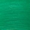 Streaked Evergreen - White